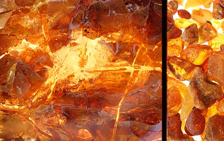 Baltic amber, chashmal