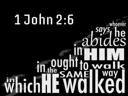 John 15