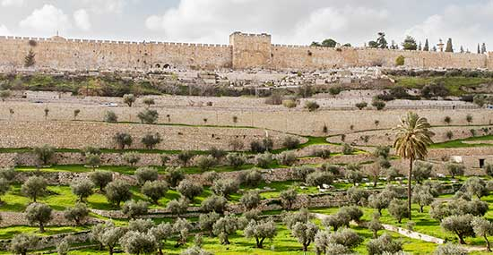View of Kidron Valley and the Eastern Gate of Mercy from Mount of Olives